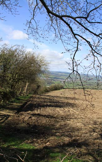 north Wales landscape in early spring